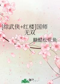 [综武侠+红楼]国师无双