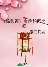 (综影视)秦晚轮回之旅